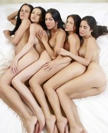 Five beauty brunette babes